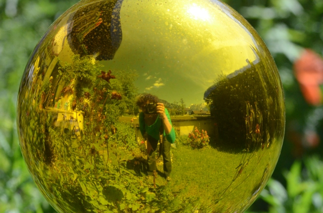 ".. a reflecting view of my aunts garden through a ""Glasskugel"" like a glassball,  which is  a traditional decoration in Bavarian gardens."