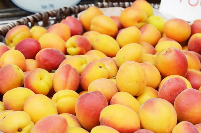 here are the sweetest apricots a tart a la Roger